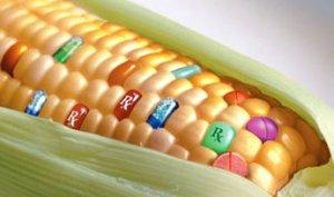 L'Horror Monsanto continua: da semi Terminator a semi Zombie